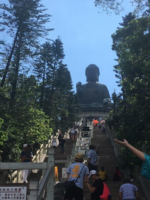 stepstobuddha
